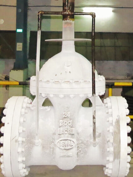 Cryogenic Valves | Oswal Industries Limited